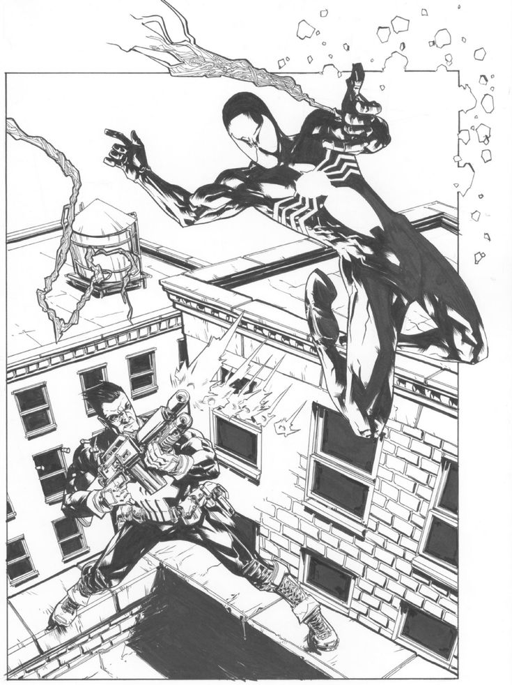 Black Suit Spider-Man vs. Punisher by Andy MacDonald Comic Art