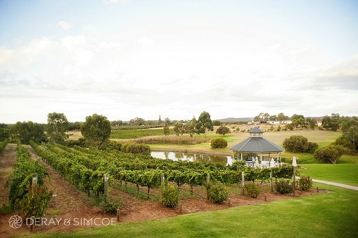 Gorgeous wedding ceremony location at Sitella Winery in the Swan Valley Western Australia Photography by DeRay & Simcoe