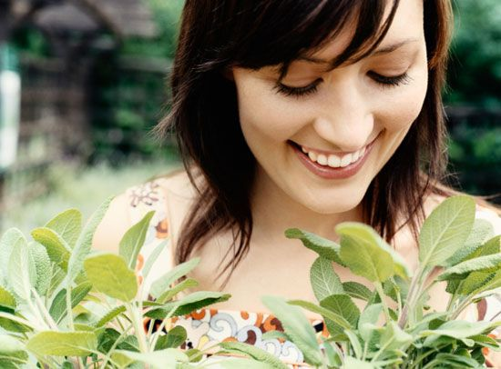 The Best Home Remedies for a Healthy Mouth: An Herbal Smile http://www.rodalenews.com/dental-herbs
