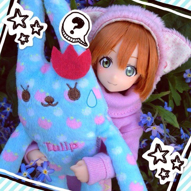 Rin came home! I'm going to use her as a male character tho so I need to think of a cute Japanese name for him  #lovelive #azone #azonedoll #doll #japan #japanese #kawaii #cute #moe #pretty #adorable #obitsu #anime #manga #rinlovelive