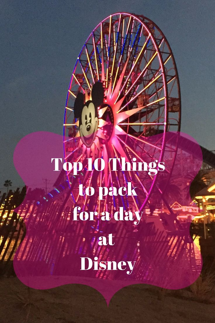 Heading out for a day at the Walt Disney World Resort? You'll want to be sure to pack these 10 things in your backpack before you leave!