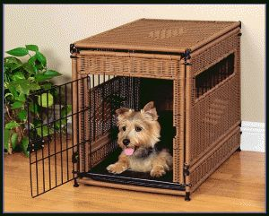 #read the #best #reviews on #dog #kennel and #pet #crate and make your #pet feel better with their #home at http://www.dogfencecenter.com/top-dog-crate-reviews-on-the-market/