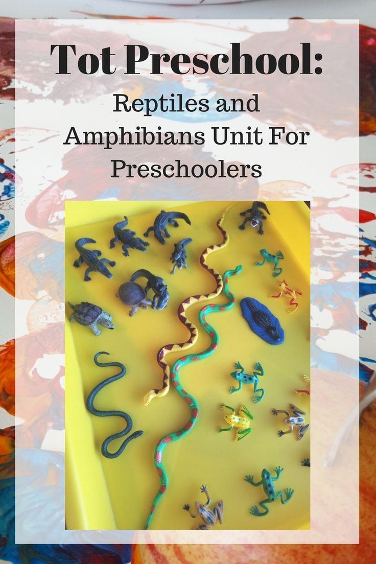 Tot Preschool Week 27 Amphibians And Reptiles Amphibians Preschool Reptiles Tot Week Reptiles And Amphibians Amphibians Reptiles [ 1104 x 736 Pixel ]