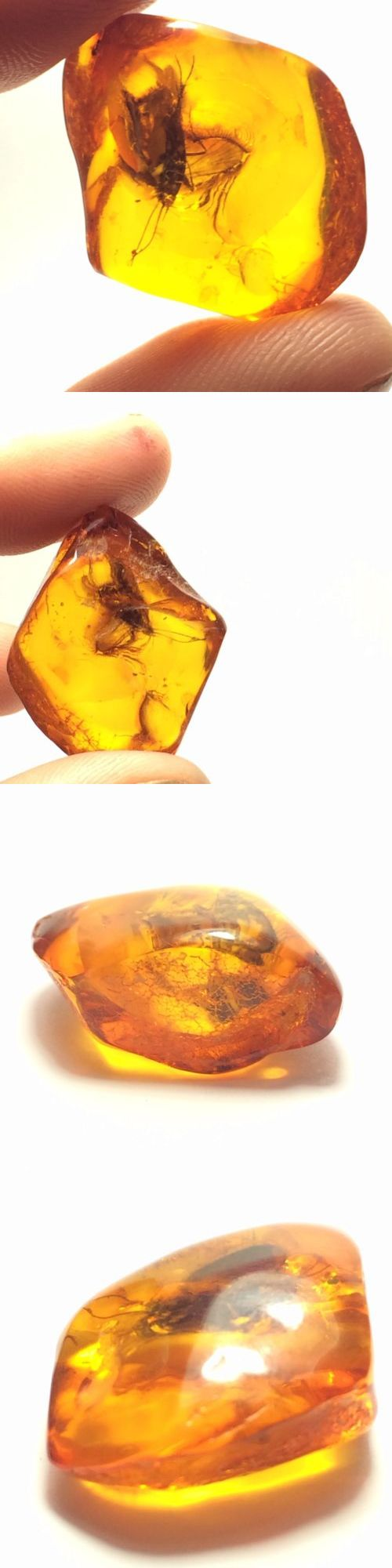 Amber 10191: 20 Ct Authentic Baltic Honey Amber Fossil Cabochon Huge Insect Bug Inclusions -> BUY IT NOW ONLY: $120 on eBay!