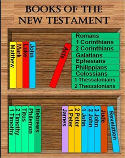 Books of the New Testament in order, color-coded by author. Nice! From NW Seminary Share