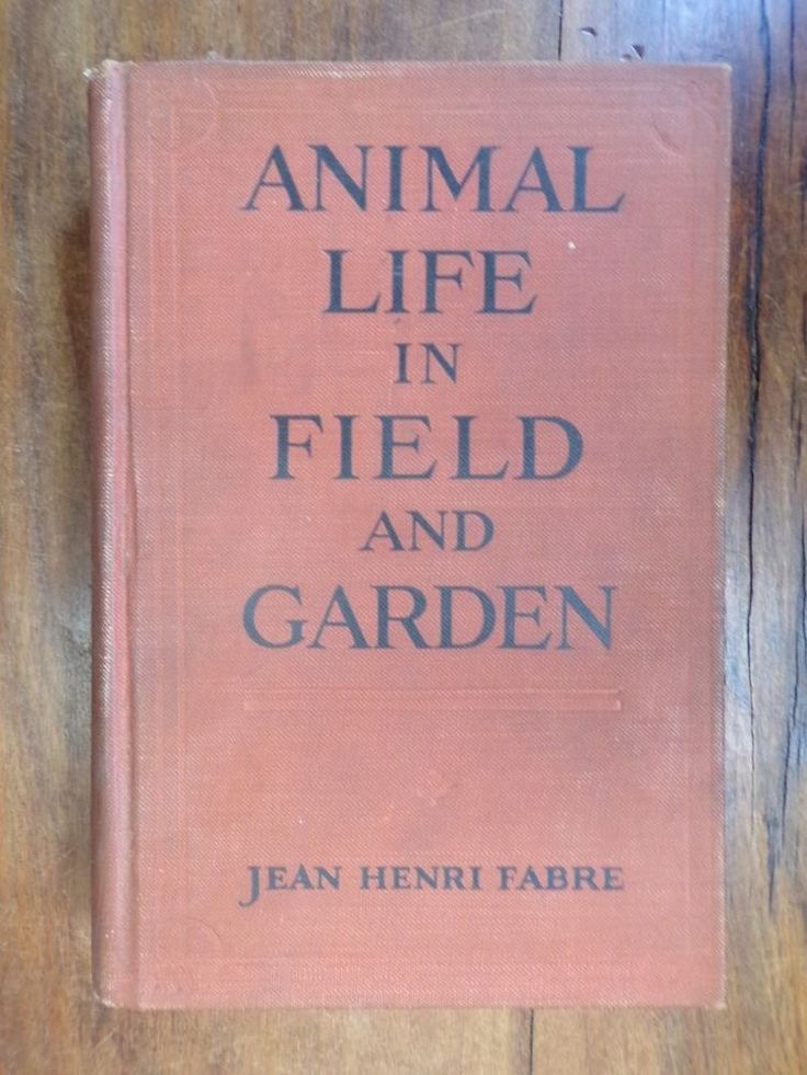 Jean Henri Fabre ~ Animal Life in Field and Garden ~ 1st/1st ~ 1921