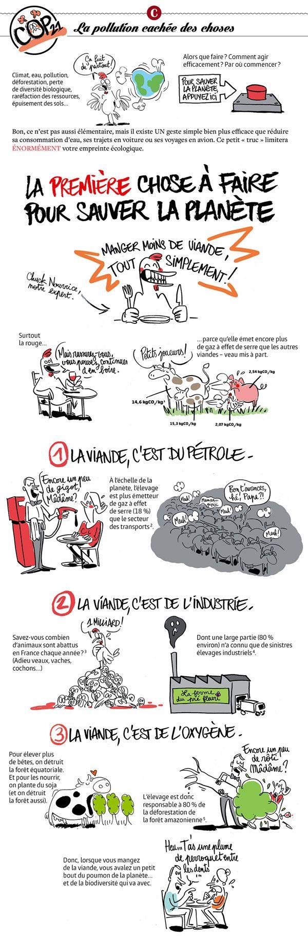 Ana-La pollution cachée des choses. Le site publie, in extenso, une bande dessinée parue dans Causette#61 (novembre 2015).