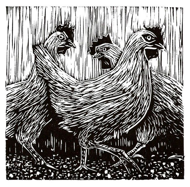 Quot roosters linocut by mike gilligan http mikegilligan