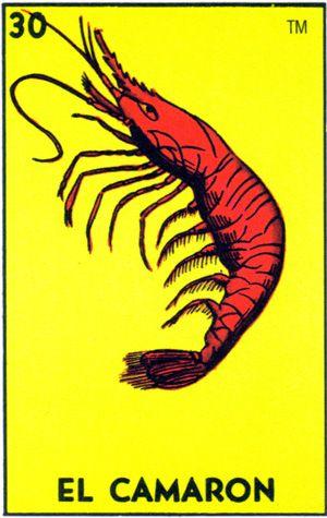 Stupid shrimp!!!~