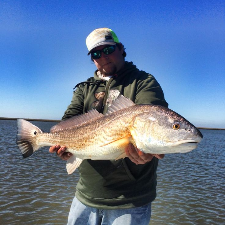 159 best images about redfish on pinterest the fly for Redfish fishing tips