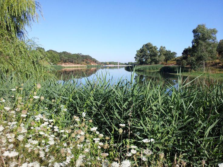 Barragem de Patudos