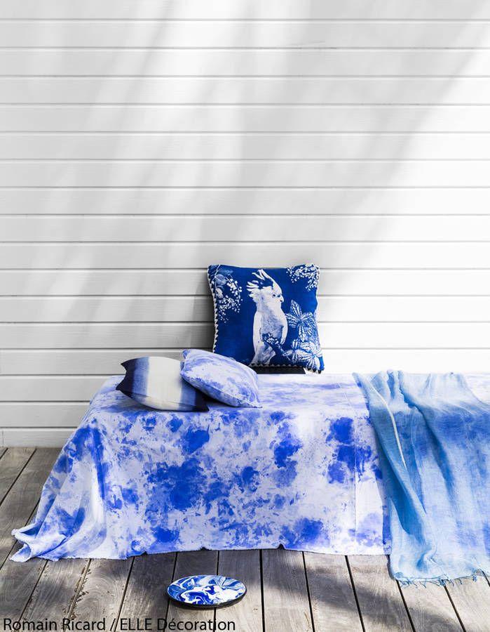 Dingo de bleu indigo