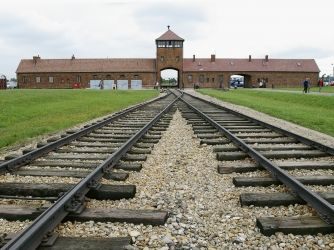 This is a picture gallery of the most notorius holocaust camps, Auschwitz. I would show these pictures to my class so they could get an idea of the places Jewish victims were held and the conditions that followed them.