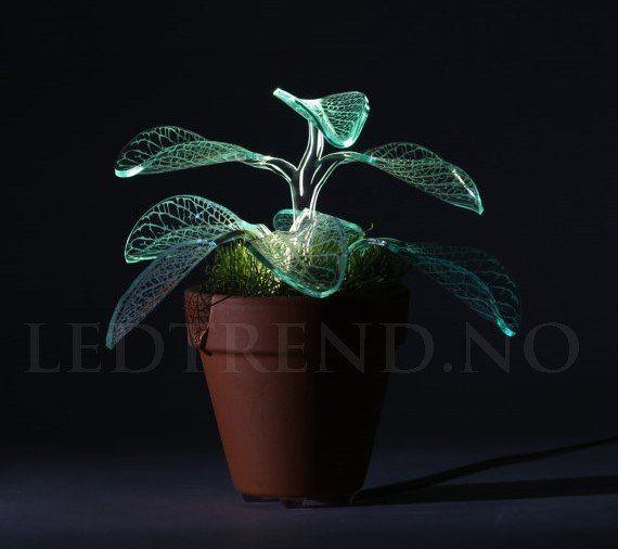 Plante lampe med LED-lys | Unik interiør  Denne LED-lys planten er designet med inspirasjon fra den botaniske verden. Lampen drives av LED-lys, bladene fører med seg LED-lyset hele veien fra bunden av og helt til toppen, grønnfargen som lyser ut er myk og deilig å se på. Bladene gir lyset en unik dimisjon når mørket faller på om kvelden. Hver lampe er unik, siden vi folder og bretter bladene selv, slik at alle bladene blir unike, akkurat som bladene er i den virkelige naturen også…