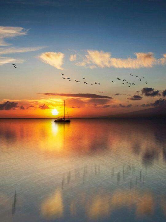 Bliss... ~rw