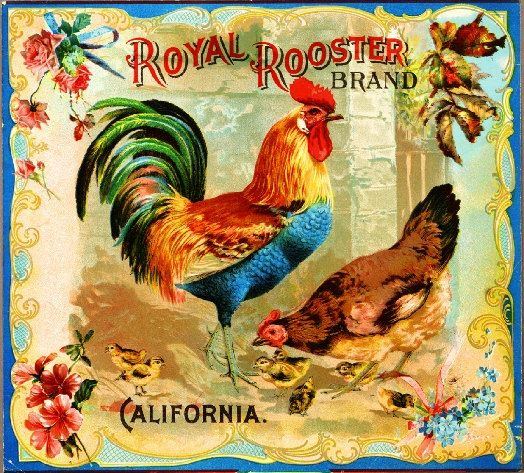 Riverside Royal Rooster Chicken Chickens Orange by ASLICEINTIME, $9.99