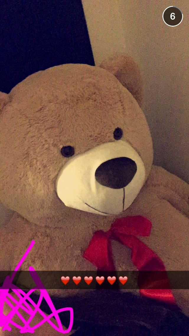 Fizzy Snapchat Story Teddy Bear Plush Cute Pictures