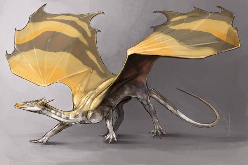 Unimatrix Eight Art • laurelhach: temeraire!Gallifrey AU–Leela's a 10...
