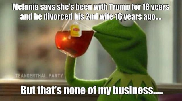 Funniest Memes Mocking Melania Trump's Plagiarized GOP Convention Speech: But That's None of My Business