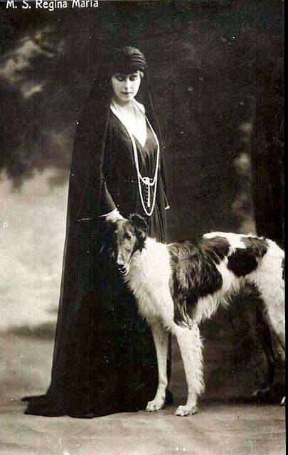 Königin Marie von Rumänien, Queen of Romania. Borzoi dog art portraits, photographs, information and just plain fun. Also see how artist Kline draws his dog art from only words at drawDOGS.com #drawDOGS http://drawdogs.com/product/dog-art/borzoi-dog-portrait-by-stephen-kline/