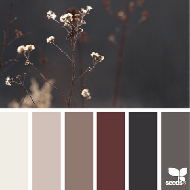 today's inspiration image for { nature tones } is by @minagraphy ... this harmony of warm and cool neutrals plays on my heartstrings ... and that dash of deep currant red? ... <gah> ... thank you Mina for sharing such lovely inspiration in #SeedsColor !