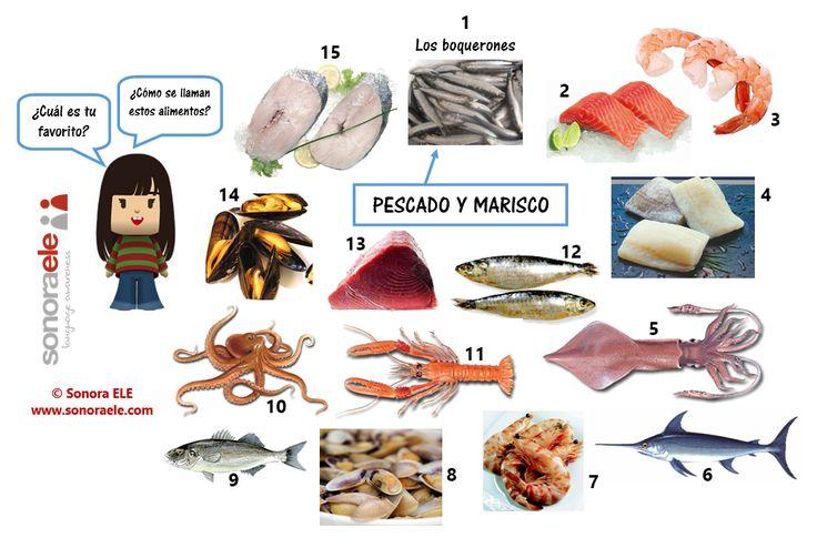 A1 - El pescado y el marisco. [TOUCH esta imagen: A1 - El pescado y el marisco by Clara Sánchez Marcos, Sonora ELE]