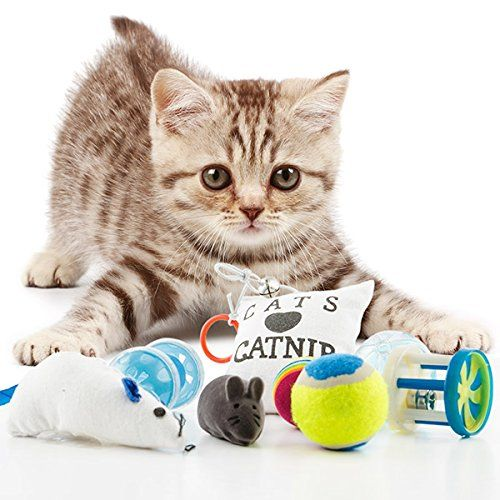 Jouets chat, jouet chaton, jeux pour chats et animaux, lo... https://www.amazon.fr/dp/B01HD4LGCQ/ref=cm_sw_r_pi_dp_x_4CioybX1ACJ2V