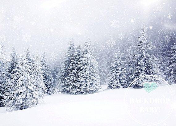Winter White Backdrop, Photography Backdrop & Floordrop, Vinyl Backdrop, PolyPro Backdrop, Canvas Backdrop, Glare Free