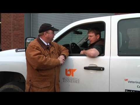 University of Tennessee College of Veterinary Medicine's Dr. David Anderson talks to Dr. Marc Caldwell about Grass Tetany