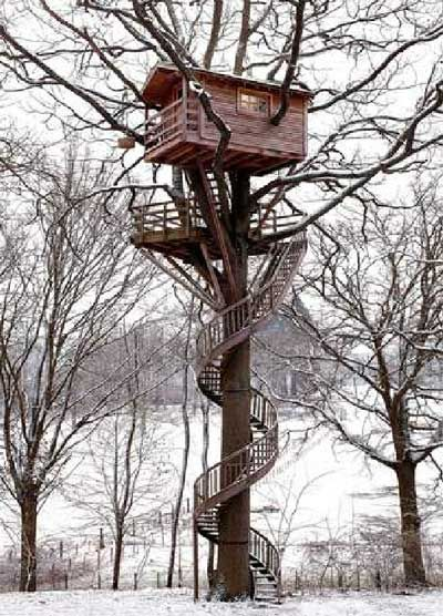 winding staircase to this tree house