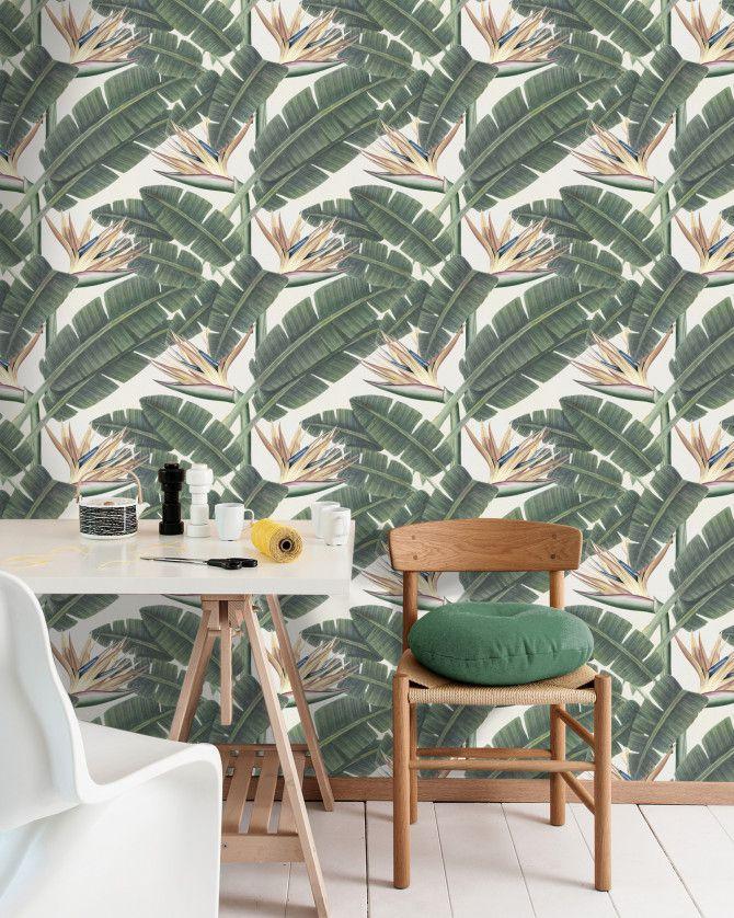 TROPICAL BLOOM Premium Wallpaper