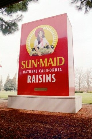 Dad sold his Sultana (Thompson Seedless) grapes to Sun Maid Raisin plant in a nearby town called Kingsburg. I used to love going to the shop there and getting chocolate raisins at cost. ♥