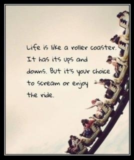 The Roller Coaster of Life