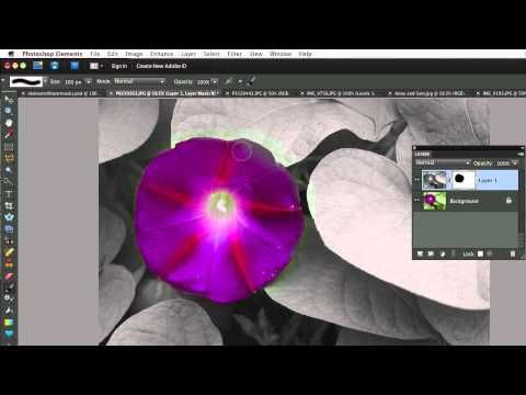 Photoshop Elements 9-Newest Features.