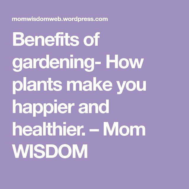 Benefits of gardening- How plants make you happier and healthier. – Mom WISDOM