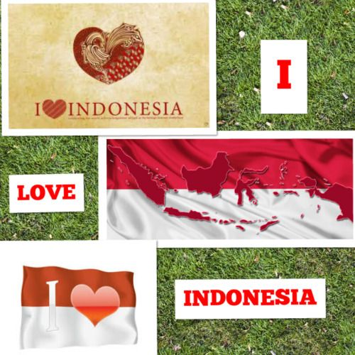 LOVE INDONESIA #PINdonesia