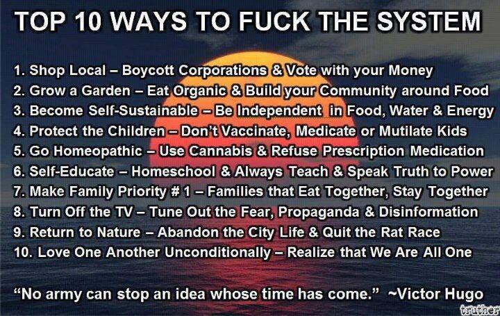 ''Top 10 Ways to Fuck the System'' 「アナーキーな生き方 トップ10」  1. 地元の小さいお店で買い物をする →巨大企業をボイコットし、自分のお金の遣い方で「投票」しましょう。  2. 庭で育てる →庭でオーガニックのものを育て、食べ物を中心にして自分の周りにコミュニティを構築しましょう。  3. 自給自足体制を整える →食べ物、水、エネルギー源を確保し、自立しましょう。  4. 子供を守る →子供にワクチンを受けさせたり、薬を飲ませたり、または傷つけさせたりしないようにしましょう。  5. ホメオパシー療法を使う →大麻を医療目的で使用し、処方薬は避けましょう。  6. 独学する →ホームスクール(自宅学習)し、常時教育を行い、権力には真実を話しましょう。  7. 家族最優先 →食事を一緒にとる家族は、ずっと一緒にいる家族です。  8. テレビを消す →恐怖の元で、プロパガンダの温床、がせネタの塊です。  9.自然に帰る →都市での生活を捨て、ラットレース(ネズミの競争)から脱出しましょう。  10.お互いを無条件で愛する…