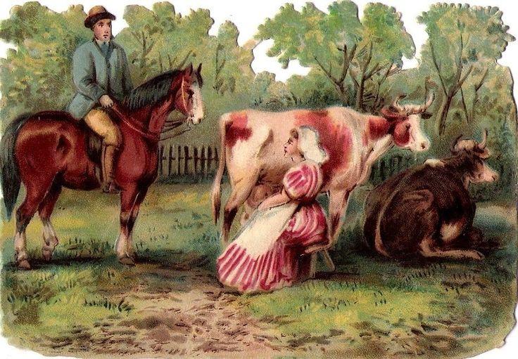 Oblaten Glanzbild scrap diecut chromo Pferd horse 12cm  Kuh cow rural scene: