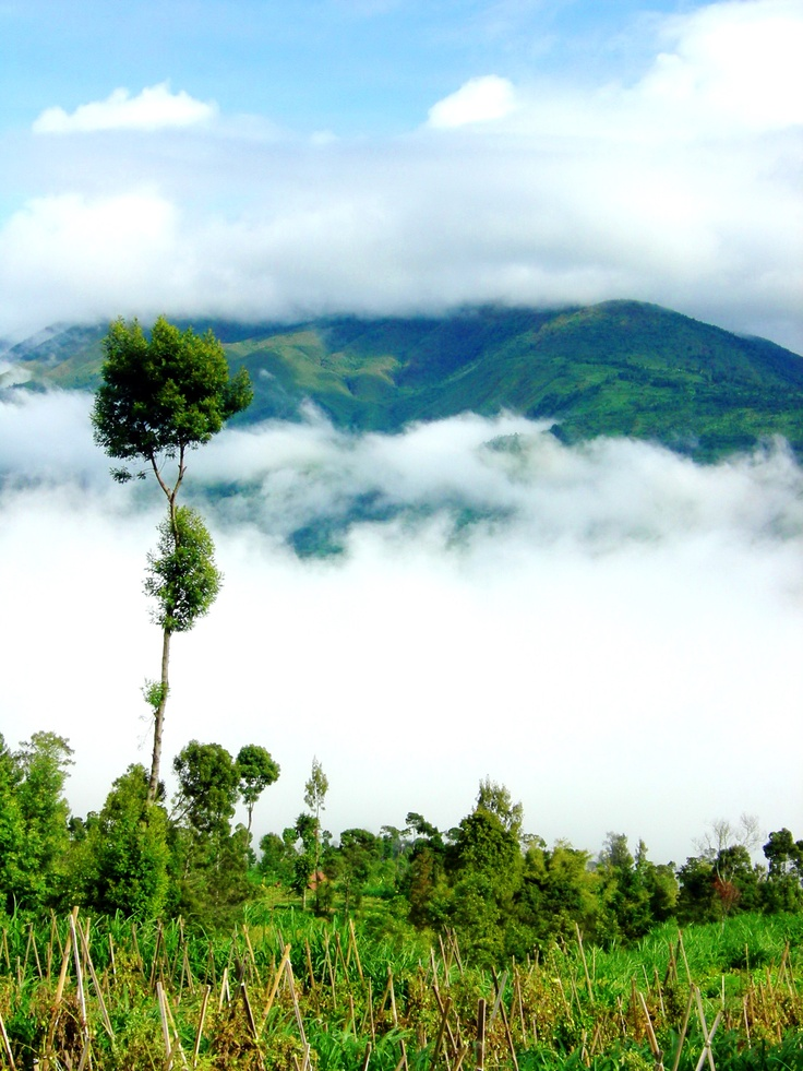 covered with thick clouds Merbabu
