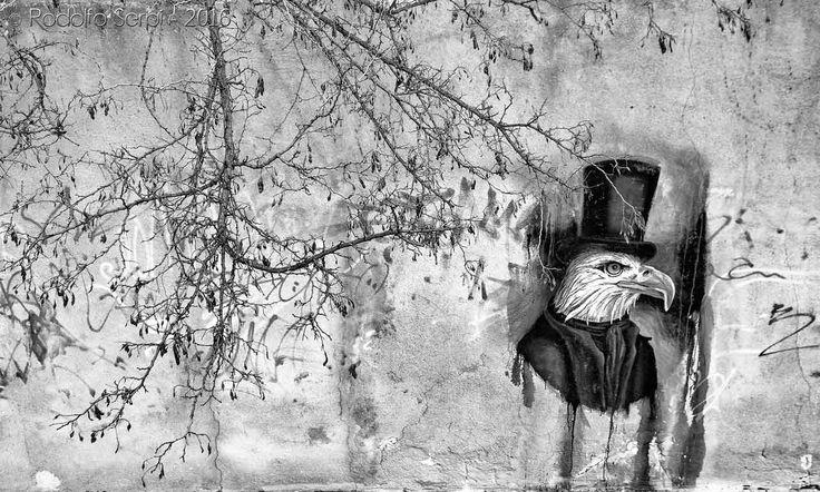 Graffiti . V.le San Vincenzo, Cagliari