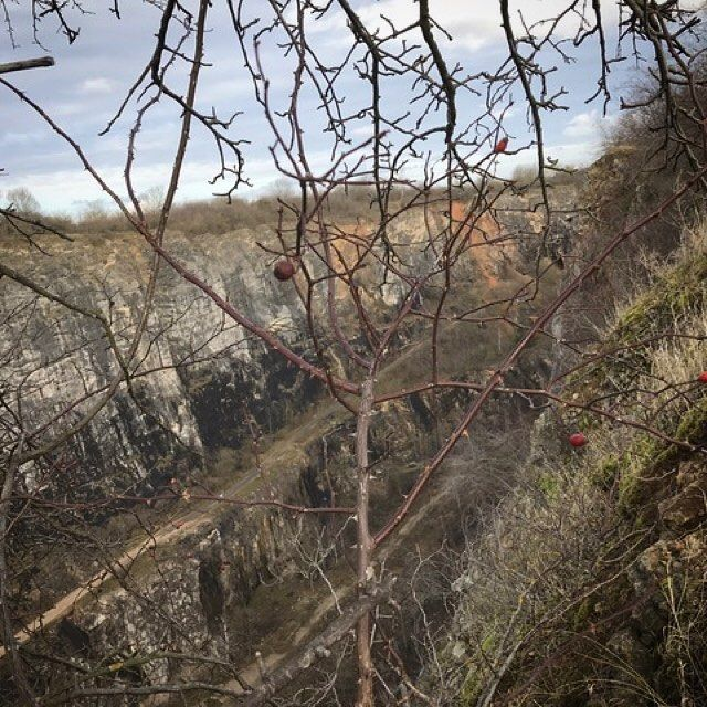 #lom #velkaamerika #priroda #nature #landscape #quarry #morina #srbsko #karlstejn #dennivylet #vylet #cestovani #explore #travel #trip #turistika #cesko #czechia #myphoto