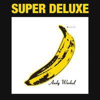 The Velvet Underground & Nico 45th Anniversary — The Velvet Underground, Nico