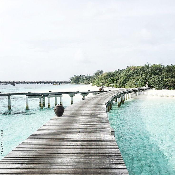 Malediwy już od dawna były na mojej liście before I die, nie sądziłam jednak, że tak szybko uda mi się zrealizować ten punkt. Zaproszenie do udziału w projekcie #travelwithTJD było dla mnie całkowitym zaskoczeniem – pojawiło się nagle i równie szybko zostało wprowadzone w życie. Było dla mnietym bardziejznaczące, że oprócz kolejnej pinezki na mapie, spełnienia jednego z marzeń, poznałam przede wszystkim ludzi, którzy w zaledwie tydzień, byli wstanie całkowicie wywrócić mój świat do góry…