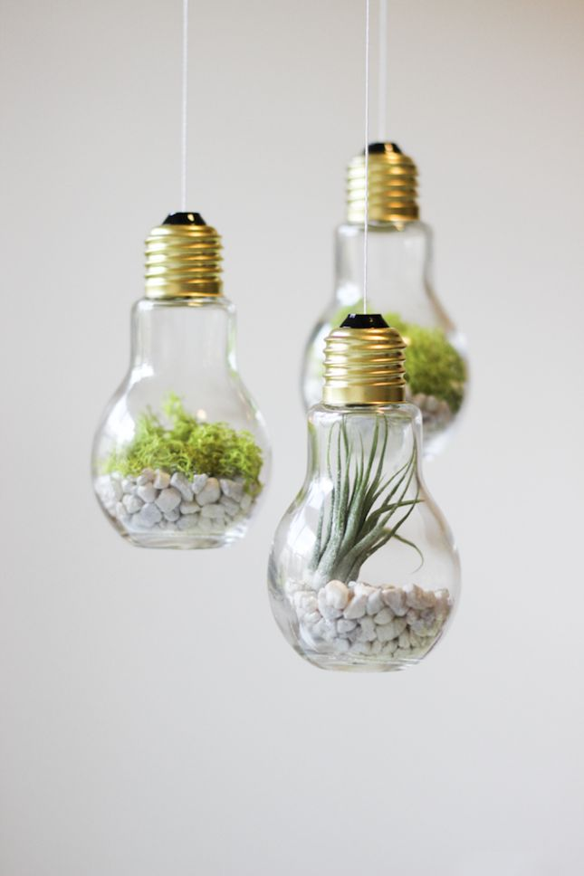 Lightbulbs, air plants and some string are all it takes to make these cool, mini hanging vases.