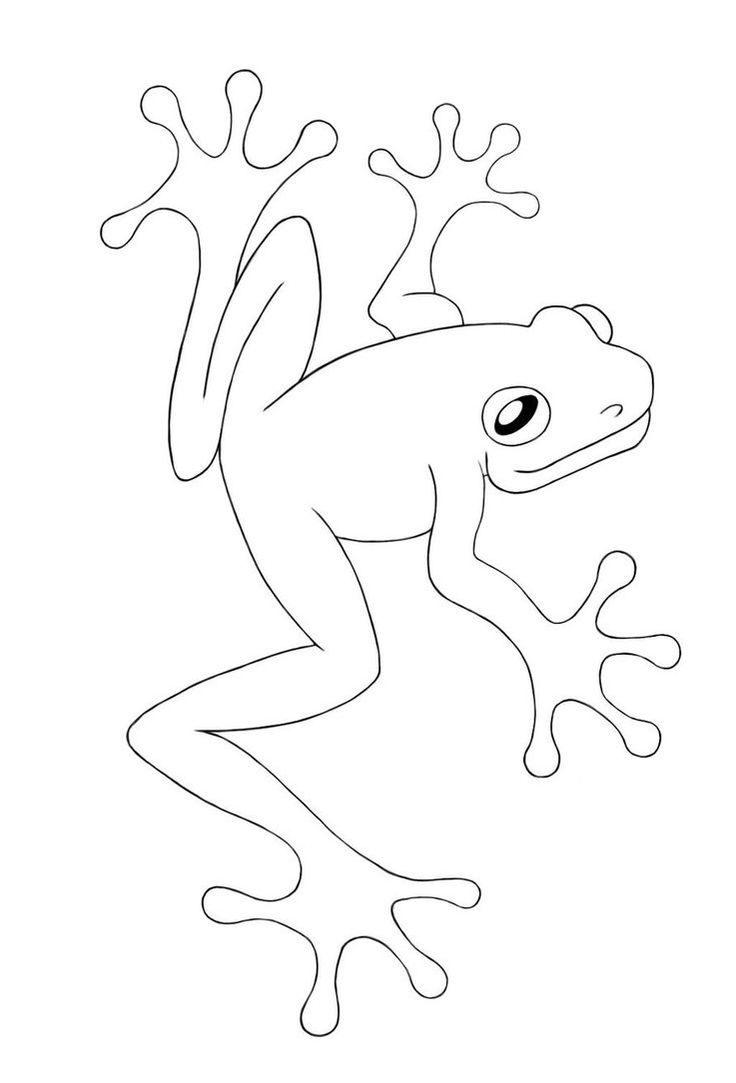 62 best frogs images on pinterest frogs kids and coloring
