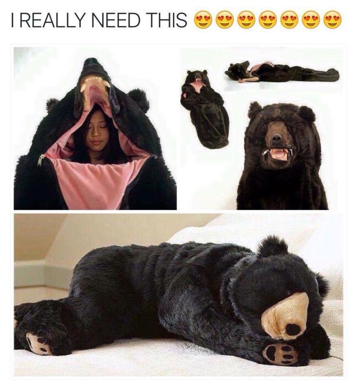 Bear snuggle. take my money. take it. Maybe something for https://Addgeeks.com ?