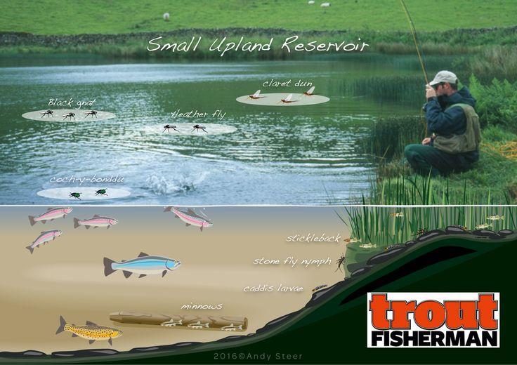 Small upland reservoir magazine illustration