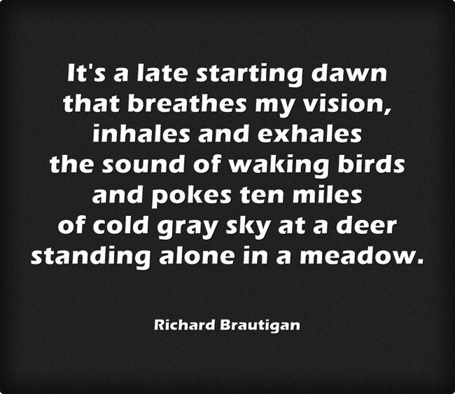 Late Starting Dawn...Richard Brautigan