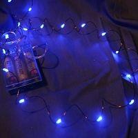 Blue Fairy Battery Lights