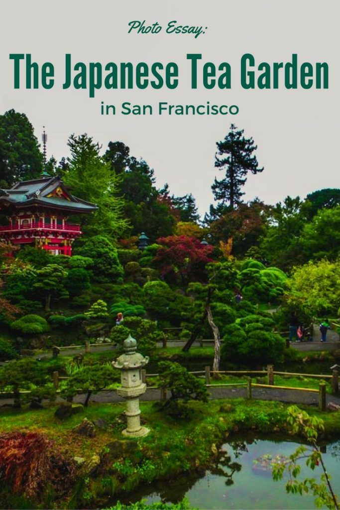 Japanese tea garden in golden gate park gardens parks - Japanese tea garden san francisco ...